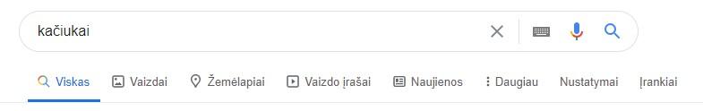 Google paieška - sekcijos