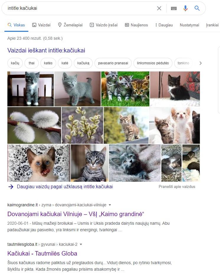 Google parametrai - paieška specifinėje vietoje